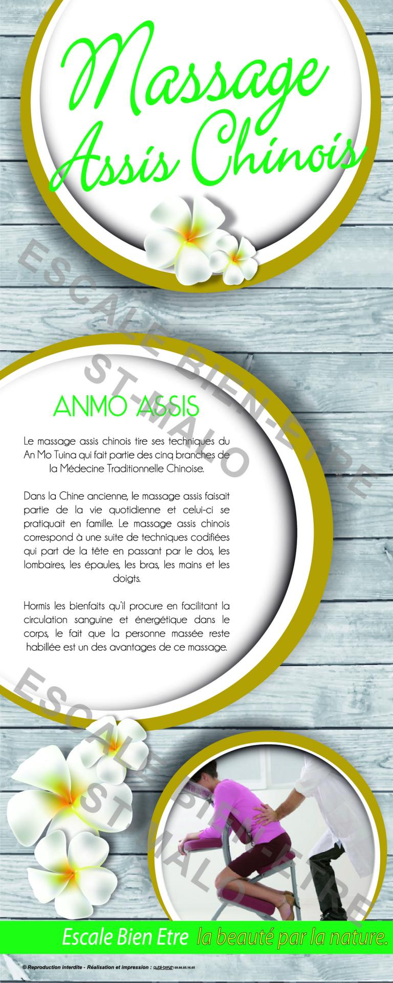 Anmo assis affiche 01 1