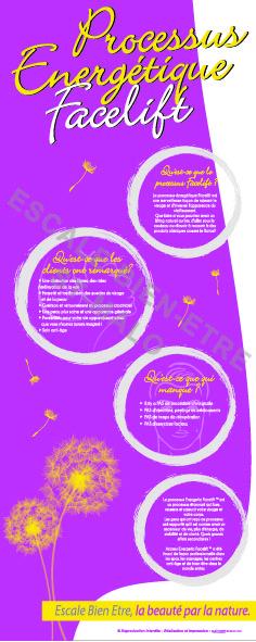 Facelift pdf